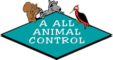 A All Animal Control of St Charles MO