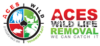 Wildlife Removal Gibson, AR